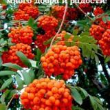 lyubovy-rozanova